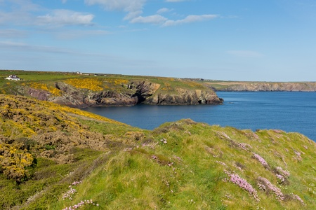 skomer island: St Brides Bay Wales UK near St Davids and in the Coast National Park    The Pembrokeshire Coast Path passes alongside the bay Stock Photo