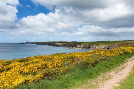 pembrokeshire: Coast Path Wales Caerfai Bay Pembrokeshire UK