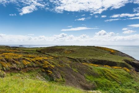 pembrokeshire: Wales Coast Path towards Caerfai Pembrokeshire UK