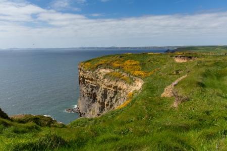 pembrokeshire: Haroldstone Chins from Wales Coastal Path near Broad Haven and St Bride s Bay Druidstone Haven Pembrokeshire Wales in the Pembrokeshire Coast National Park    Stock Photo