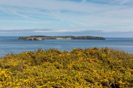 pembrokeshire: Caldey Island Pembrokeshire Wales