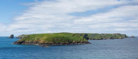 skomer island: Skomer Island
