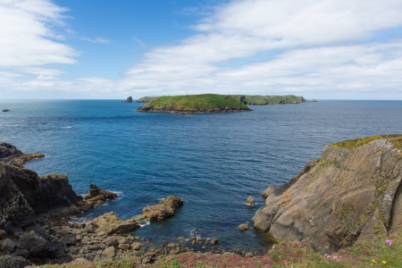 ynys: Skomer Island Pembrokeshire West Wales Stock Photo
