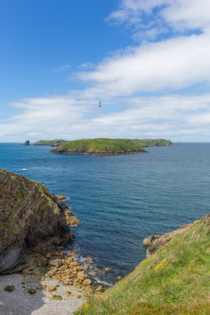 skomer island: Skomer Island Pembrokeshire West Wales known for Puffins, wildlife and a National Nature Reserve    In Welsh known as Ynys Sgomer  Stock Photo