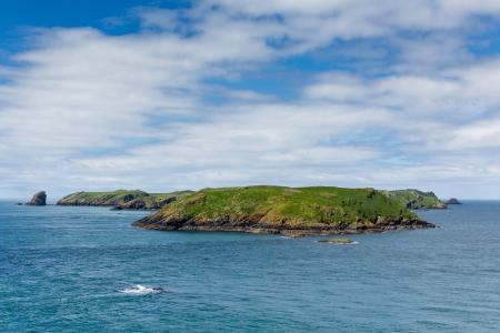 skomer island: Skomer Island Wales