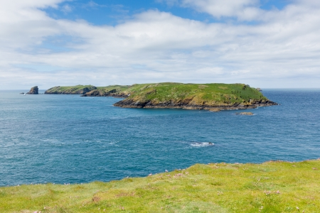 skomer island: Island of Skomer Pembrokeshire West Wales  Stock Photo
