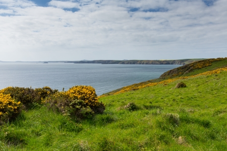pembrokeshire: Pembrokeshire coast towards Newgale and Rickets Head St Bride s Bay Wales from Nolton Haven     In the Pembrokeshire Coast National Park   A few miles from Haverfordwest