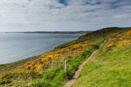 pembrokeshire: Pembrokeshire coast path towards Newgale and Rickets Head St Bride s Bay Wales from Nolton Haven     In the Pembrokeshire Coast National Park   A few miles from Haverfordwest