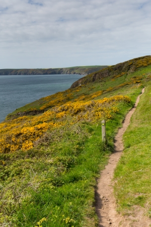 great bay: Pembrokeshire coast towards Newgale and Rickets Head St Bride s Bay Wales from Nolton Haven     In the Pembrokeshire Coast National Park   A few miles from Haverfordwest