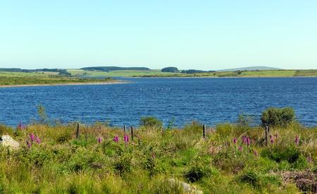 bodmin: Colliford lake reservoir Bodmin Moor Cornwall England UK Stock Photo