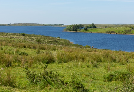 bodmin: Colliford lake Bodmin Moor Cornwall England UK