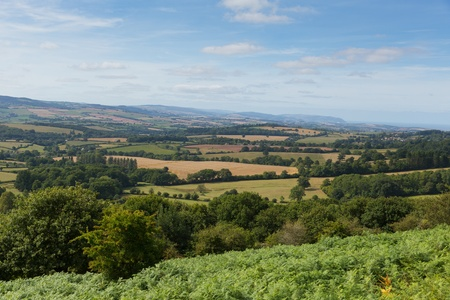 quantock hills: View from Quantocks Somerset England