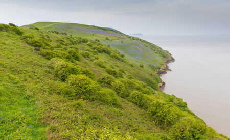 brean: Bluebell coast scene Brean Down Somerset England Stock Photo