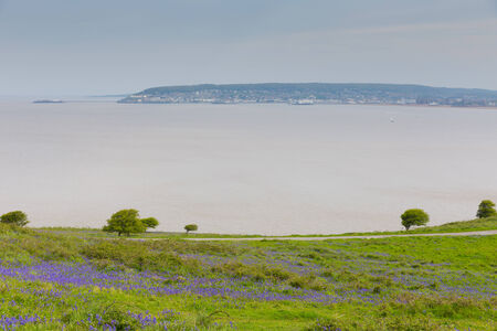 brean down: Weston-super-mare bay and Bluebells from Brean Down Somerset in the spring Stock Photo