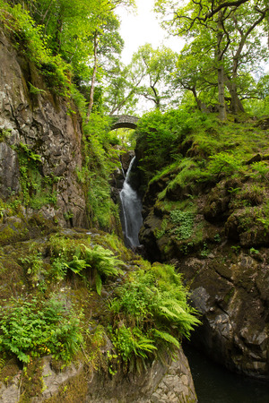 beautiful woodland: Aira Force waterfall in Ullswater Valley Lake District, Cumbria, England in beautiful woodland with bridge