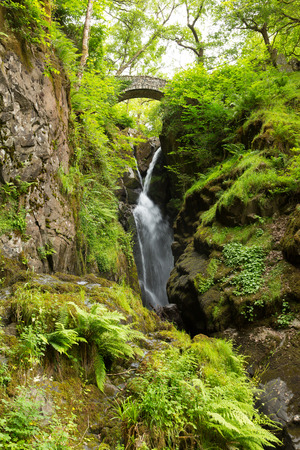 Aira Force waterfall in Ullswater Valley Lake District, Cumbria, England in beautiful woodland with bridge photo