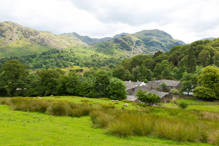 borrowdale: Lake District countryside scene Seatoller Borrowdale Valley Cumbria England UK Stock Photo