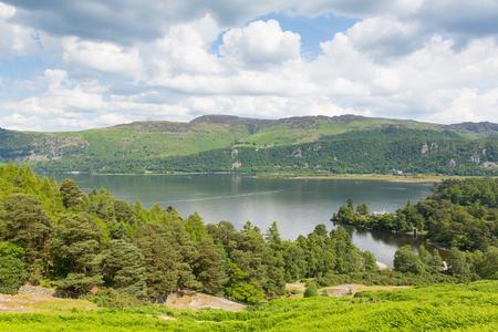 borrowdale: Brandelhow Bay Derwent water Lake District Cumbria England UK Stock Photo