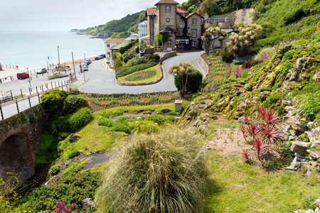 Ventnor Botanic Gardend Isle of Wight 版權商用圖片