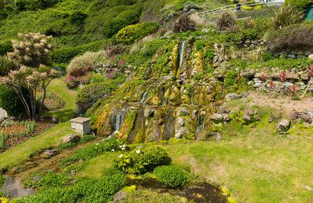 Ventnor Botanic Garden Isle of Wight