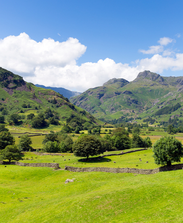 langdale pikes: Langdale Valley Lake District Cumbria with mountains blue sky and clouds on beautiful summer day
