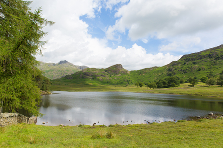 langdale pikes: Blea Tarn Lake District Cumbria England UK between Great Langdale and Little Langdale  Stock Photo
