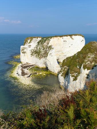 jurassic coast: Jurassic Coast Dorset England UK chalk stacks Old Harry Rocks