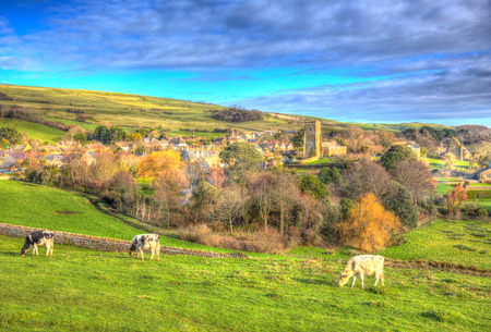 bright colour: English village of Abbotsbury Dorset UK set in the countryside with cows and a church like a painting in vivid bright colour HDR