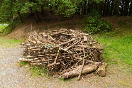 replica: Replica Osprey nest built to model those found in trees