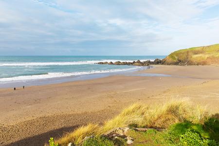 burgh: Challaborough beach South Devon England uk popular surfing destination near Burgh Island and Bigbury-on-sea on the south west coast path
