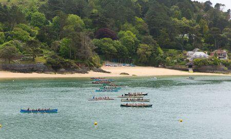 gig harbor: Pilot Gig Racing rowing event at Salcombe Devon on Sunday 31st May 2015