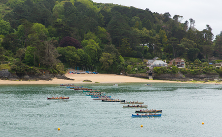gig: Pilot Gig Racing rowing event at Salcombe Devon on Sunday 31st May 2015