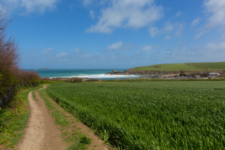 south west coast path: South West coast path Newtrain Bay North Cornwall near Padstow and Newquay in spring with blue sky and sea Stock Photo
