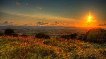 hill station tree: Sunset in Somerset England UK view from Quantocks Hills to Blackdown Hills across Taunton valley in vivid colourful HDR like a painting Stock Photo