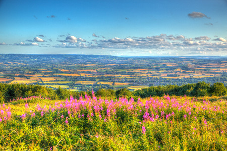 west country: West country views from Quantock Hills Somerset England UK on a summer evening in the direction of Exmoor across Taunton valley in vivid colourful HDR like a painting