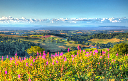 english west country: View from Quantock Hills Somerset England UK towards Hinkley Point Nuclear Power Station and the Bristol Channel on a summer evening in vivid colourful HDR like a painting