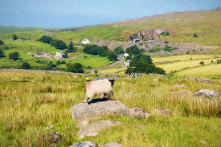 like english: English countryside with sheep on a rock near Merrivale Dartmoor Devon England like oil painting Stock Photo