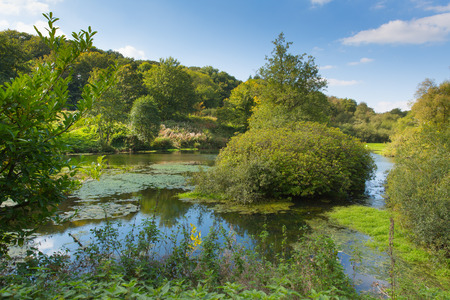 english west country: Otterhead Lakes East Devon England uk in the Blackdown Hills Area of Outstanding Natural Beauty