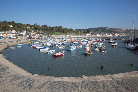 lyme: Lyme Regis harbour Dorset in summer Stock Photo