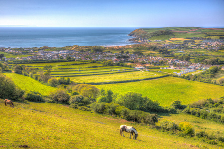Devon countryside view to Croyde bay England UK in summer with ponies in colourful hdr