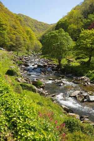 lynmouth: River Lyn near Lynmouth Devon on walk to Watersmeet