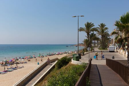 Palm trees at Mil Palmeras Costa Blanca Spain on promenade paseo leading to the beach Stockfoto