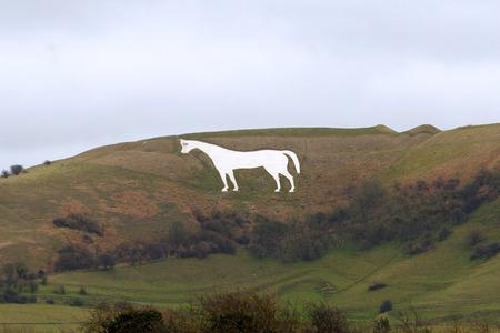 웨스트 버지니아 화이트 말 윌 스 셔 잉글랜드에 하얀 초크 말 언덕에 윌 영국에서