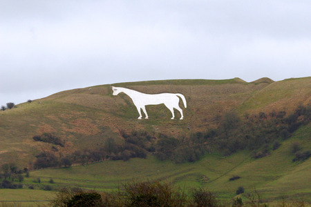 Westbury White Horse in Wiltshire England      	White chalk horse on hillside in wiltshire england