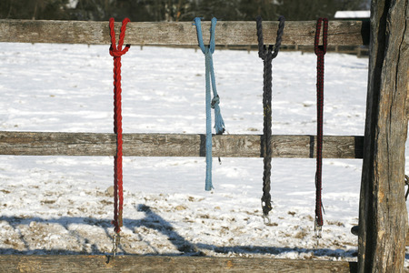 snaffle: Rural scene winter pinfold with colored horse equipment as a background