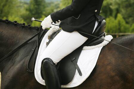 barn girls: Unknown rider sitting on a dressage horse
