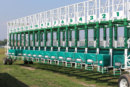 racetrack: Green colored start gates for horse races on the racetrack
