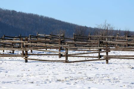 corral: Fresh snow on wooden corral fence at winter rural scene