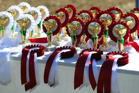 Close-up of golden trophy and ribbons for equestrian winners
