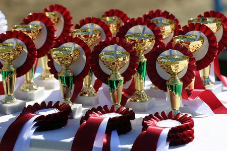 corse di cavalli: Primo piano di trofei d'oro e nastri per i vincitori equestri
